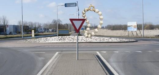 Op de rotonde Vrouwenmantel komt een kralenarmband. (Foto: Rob Glastra)