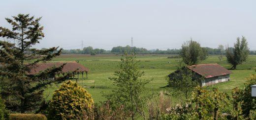 De twee Gouderakse droogschuren. De schuur rechts moet worden gesloopt ten behoeve van het nieuwe landgoed. (archieffoto PvdA Krimpenerwaard)