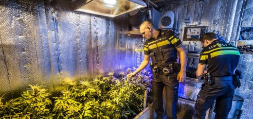 Agenten van Politie Krimpenerwaard in de container van Stedin, die is ingericht als wietkwekerij.