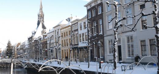 winterzilverstad