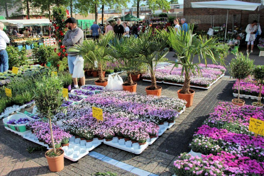 Bloemetjesmarkt Krimpen 21-05-2018 043