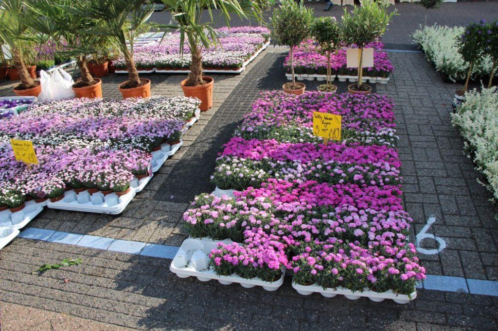 Bloemetjesmarkt Krimpen 21-05-2018 046