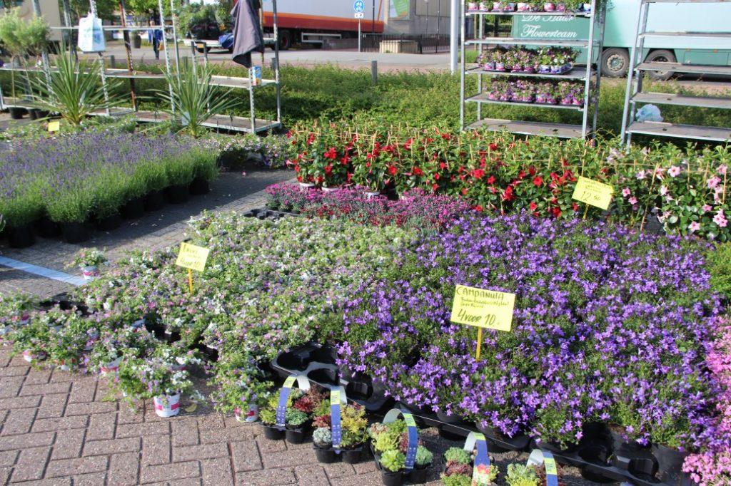 Bloemetjesmarkt Krimpen 21-05-2018 091