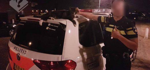 (Foto: politie Krimpenerwaard)