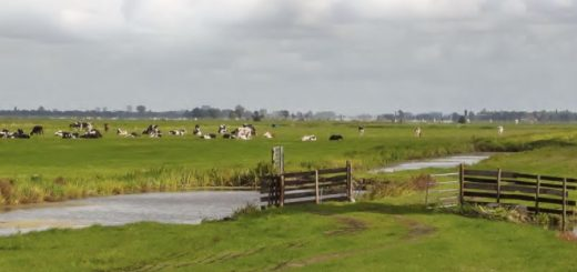 platteland1
