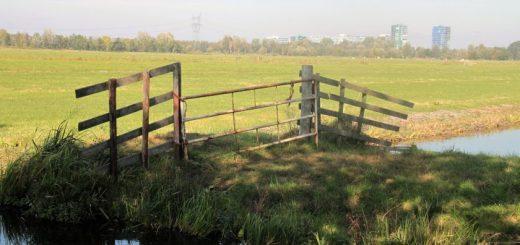 De polder tussen Krimpen aan de Lek en Krimpen aan den IJssel was eerder in beeld als locatie voor grootschalige woningbouw. (Foto: Floris Bakker)