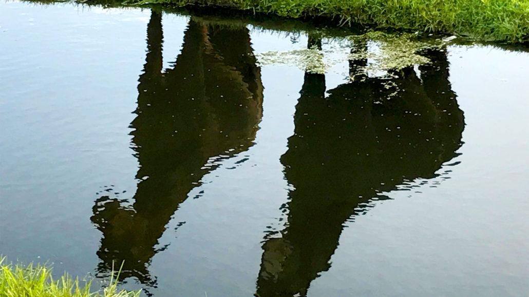 reflectie-van-paarden-in-sloot-breed-1030x579
